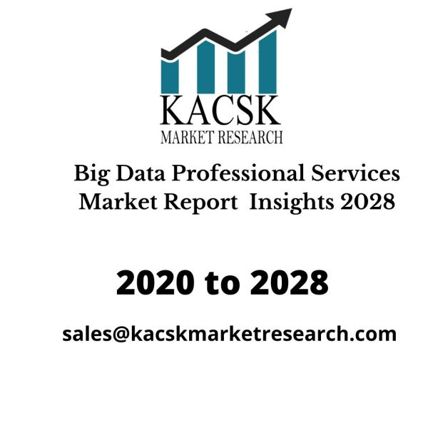 Big Data Professional Services Market Report Insights 2028