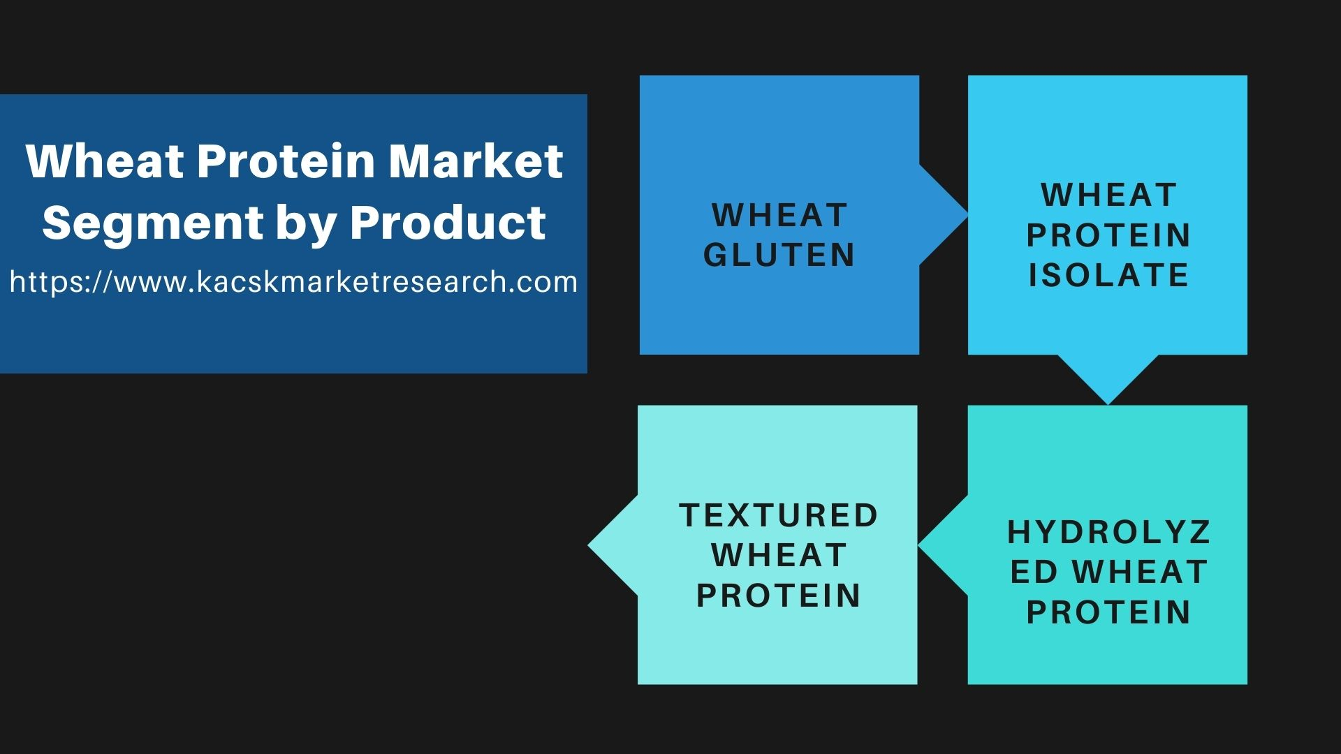 Wheat Protein Market Segment by Product